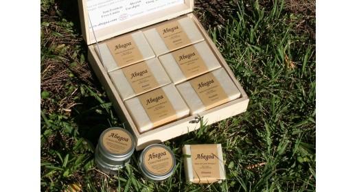 & Abegoa Soap Box